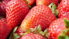 Red strawberries on group arranged 4K 2160p UltraHD footage - Red strawberry Stock Footage