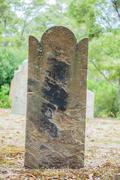Rip Halloween tombstone - stock photo