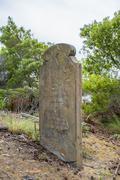 Old Historic Cemetery - stock photo