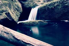 Torrent,  mountain stream with mossy stones, rocks and fallen tree. Stock Photos
