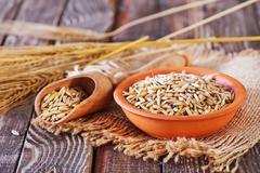 Oat grain Stock Photos