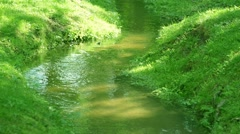 Forest brook in Russia near Saint Petersburg Stock Footage
