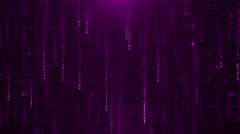 Purple digital data background 4K (More than 35 ) Stock Footage