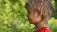 Child has summer joy with dandelion Stock Footage