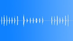 chicken cartoon voice - sound effect