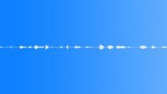 JACKET_NYLON_SPORT_ZIPPER_OPEN_CLOSE_FAST_SLOW.wav Sound Effect
