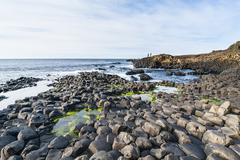 The Giants Causeway, UNESCO World Heritage Site, County Antrim, Ulster, Northern - stock photo