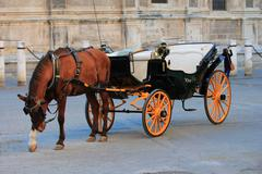 Traditional horse and carriage in Seville, Andalusia, Spain Stock Photos