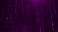 Purple digital data background 4K (More than 35 ) - stock footage