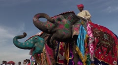 The elephants and their trunks in the air for the parade Stock Footage