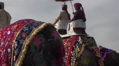 Parade for the feat of the elephants at jaipur Stock Footage