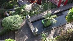 4k Tropical ZEN garden Madeira aerial view Stock Footage