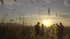 Silhouette Of Friends And Couple Walking Through Field At Sunset Stock Footage