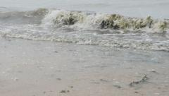 Slow motion of waves on the beach with algae mixed with water 1080p FullHD  Stock Footage