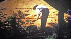 CHATTANOOGA, USA - 1955: Farmer hand digging from a pile of fertilizer to feed Stock Footage