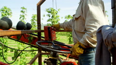 Worker operating a harvesting machine Stock Footage