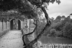 Palais de la Berbie Gardens Alley at Albi, Tarn, France - stock photo
