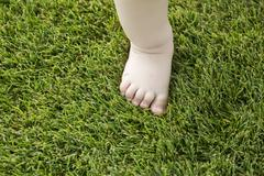 Tiny little bare baby foot on grass Stock Photos