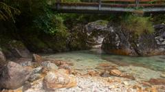 Forest creek running under the wooden bridge. Austria, Obertraun Stock Footage