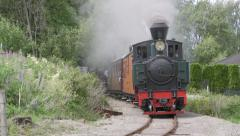 Narrow gauge steam railroad train passing blowing whistle Stock Footage