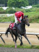 Racing Jockey - Bay Horse - Side Angle - Cloudy Day Stock Photos