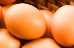 Fresh brown cage free eggs Stock Photos