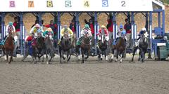 Horse Racing - Eight Jockeys at Track Gates After Start - stock photo