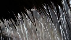 Tropical downpour. Raindrops fall from roof (video with sound) Stock Footage