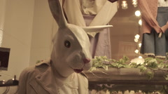 Mannequin with rabbit's head in a shop, Tokyo, Japan Stock Footage