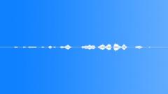 Meadow Small Birds Cuckoo Mono Loop Sound Effect
