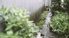 Rain falling by a warehouse, Tokyo, Japan Stock Footage