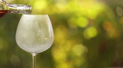 Rose wine and icy glass in summer garden Stock Footage