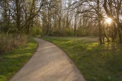 Stock Photo of Footpath in park