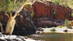 Ormiston gorge and ghost gum Stock Footage