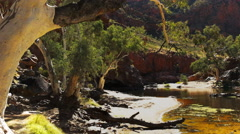 Ormiston gorge waterhole Stock Footage