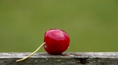 Stock Video Footage of The core of cherries