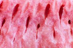The flesh of watermelon Stock Photos
