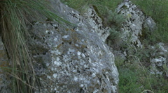 Limestone Composition Rocky Cliff Stock Footage