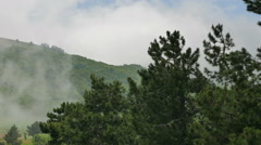 Fog over the forest in the mountains. Mount Ai-Petri, Crimea. - stock footage