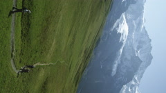 Static shot of hikers walking path at base of Swiss Alps. Stock Footage