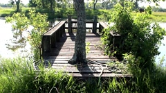 Old fishing pier on pond with a tree growing in the middle Stock Footage