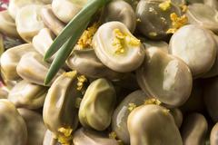 Broad Bean with olive and garlic - stock photo