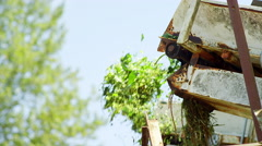 Freshly harvested hops being conveyed - stock footage