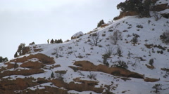 Static shot of group of people in winterclothes on top of cliff. Stock Footage