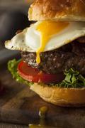 Homemmade Bacon Hamburger with Egg - stock photo