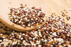 Tricolor quinoa grain Stock Photos