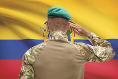 Dark-skinned soldier in hat facing national flag series - Ecuador Stock Photos