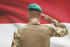 Dark-skinned soldier in hat facing national flag series - Indonesia Stock Photos