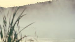 Morning fog moves over a dam with cane Stock Footage