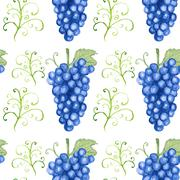 Watercolor grape in vintage style Stock Illustration
